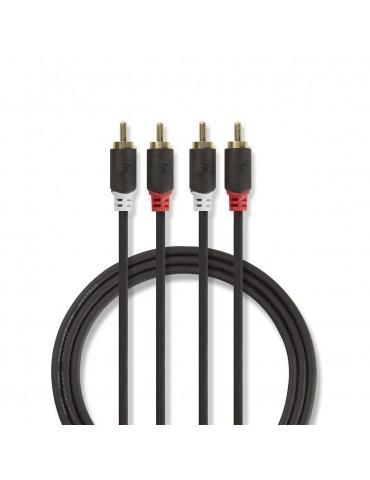 Câble audio stéréo | 2x RCA...